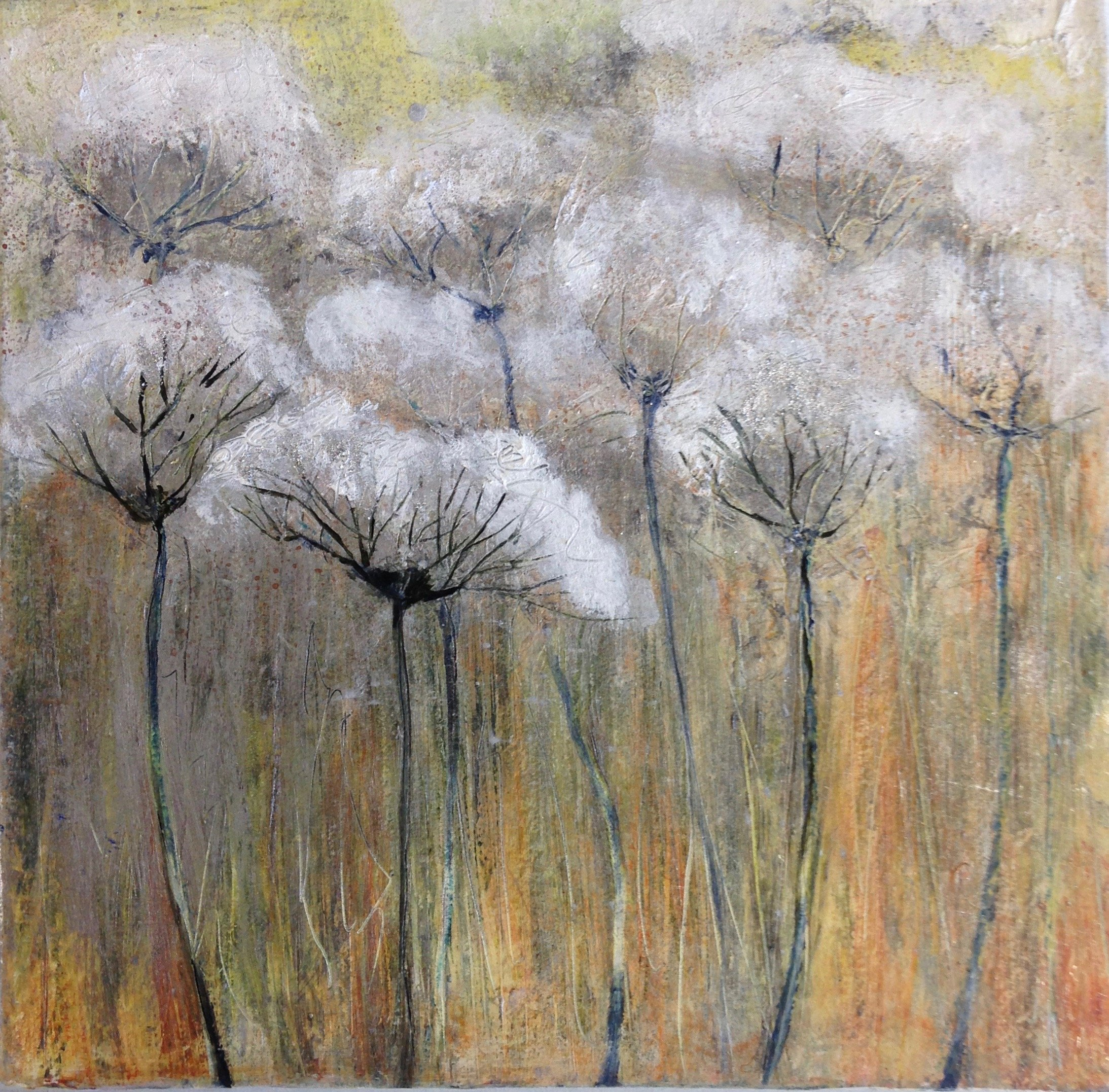 cow parsley 2 £30